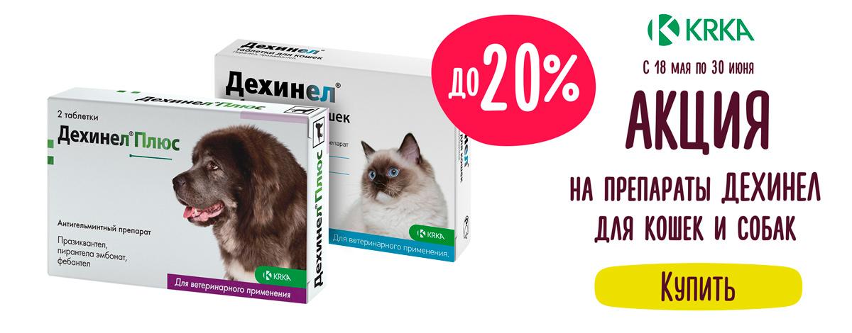 Скидка до 20% на препараты Дехинел для кошек и собак