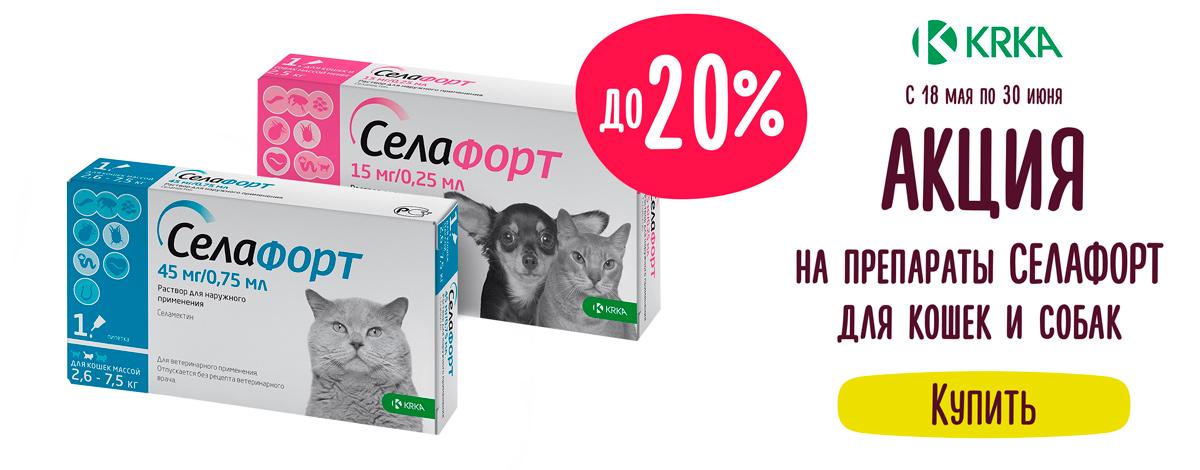 Скидка до 20% на препараты Селафорт для кошек и собак